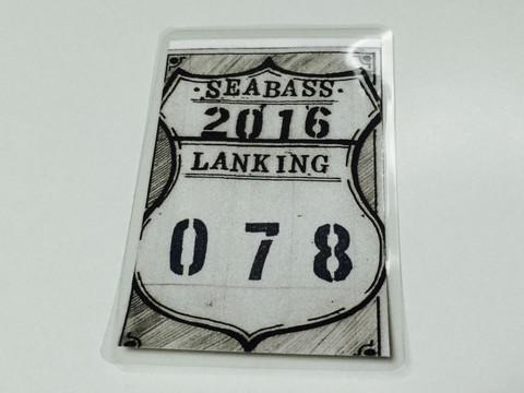 Sbr2016c