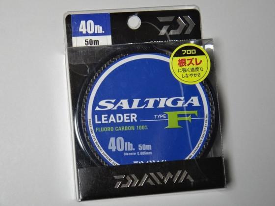 Saltiga12b_3