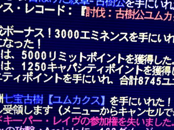 Ffxi170910_c3s