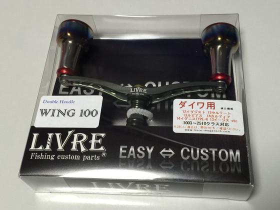 Wing100ec_1601_1