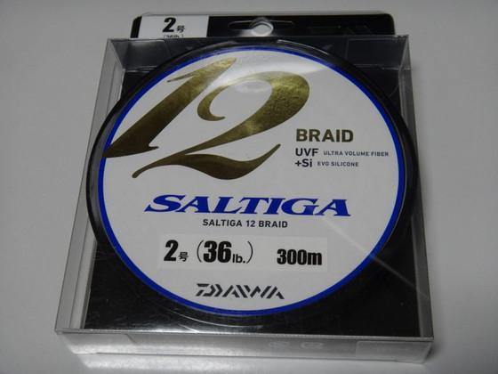 Saltiga12b_1