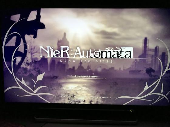 Nier_demo_2