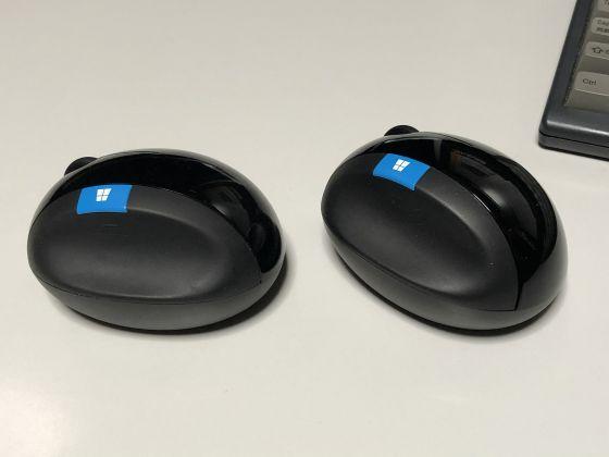 Mouse2005c_2